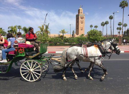 Il Marocco prova a far ripartire l'economia