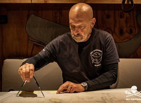 L'Ammiraglio De Giorgi racconta l'operazione SISO di Sea Shepherd a Striscia la notizia